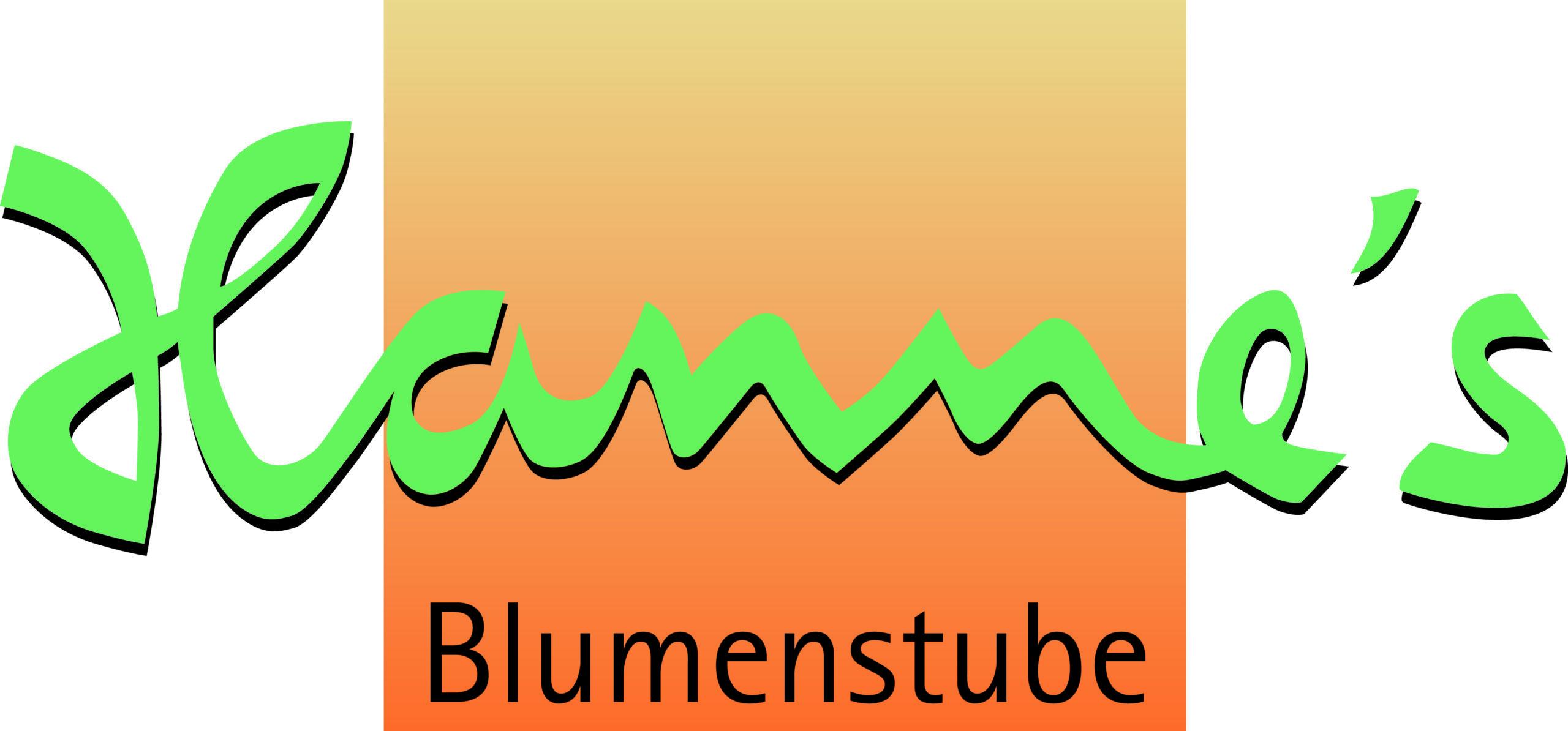 Hannes Blumenstube